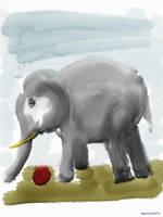 Little Elephant by mprove
