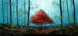 Red_From_The_Deep_Forrest by LordaGoran