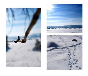 winter landscape by ViniPL