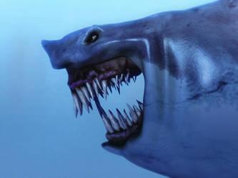 shark by checkczech
