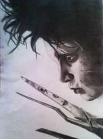 Edward Scissorhands by DanloS