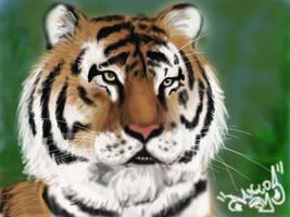Tiger - Digital Art by DanloS