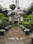 Botanical Garden Reflect by DrewLyons