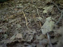 The fallen groun' by LeetZero