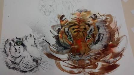 Tiger by Pandalex04