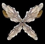 Metallic Wings by JinxMim