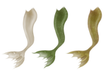 Wavy Mermaid Tails by JinxMim