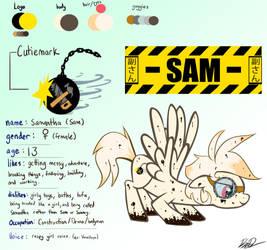 MLP OC Sam Character Ref Sheet by vicse