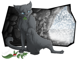 I've always wanted to be a warrior - Cinderpelt by Kocurzyca
