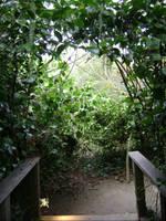 Secret Garden by SilverWynd