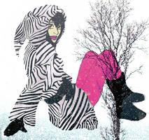 zebra by paramorphine