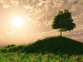 hill tree by aram287