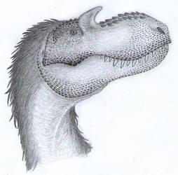 Gorgosaurus head by Aesirr