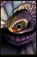 Eye of the Dragon by IzaLoozer