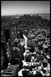 NY2 by tooldissectional