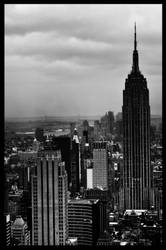 NY3 by tooldissectional