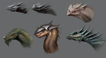 Dragon heads by RaymondMinnaar