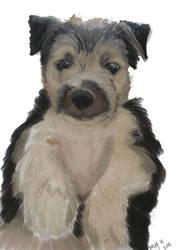Friends Puppy by BlackClawedLion