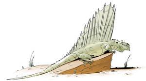 Another Dimetrodon by okavango