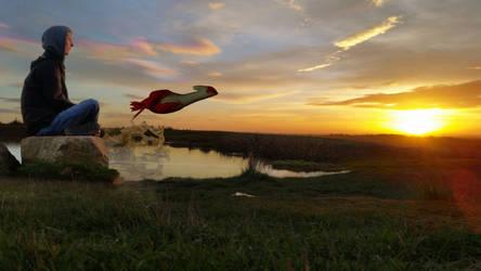 Sunset Splash by TheModerator