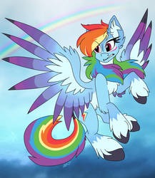 Rainbow Dash Alternate Design by UntrimmedLines