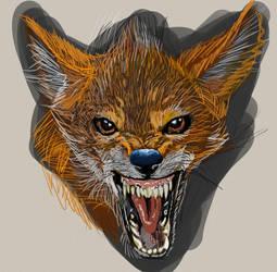 fox practice by mechaguy