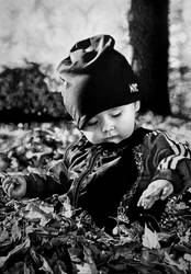 Autumn. Leaves. Love. by Mim78