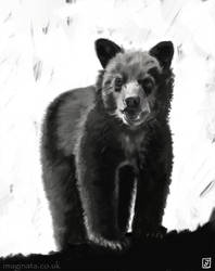 Feb 2018 Challenge - Day 10 - Black Bear Cub by Imaginata