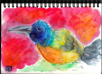 Bird by Otai