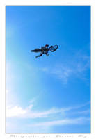 Motorbike in the sky - 022 by laurentroy