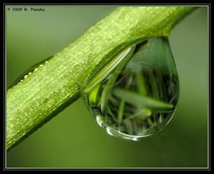 A Drop by mplonsky