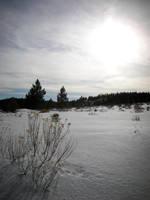 Winterscape by Jshei