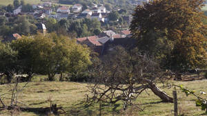 a village in its nest by segroeg