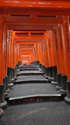 Torii path to Fushimi Inari-taisha (Kyoto) by Alicelis88