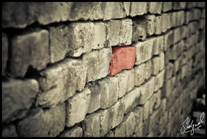 Another brick in the wall... by midwatch