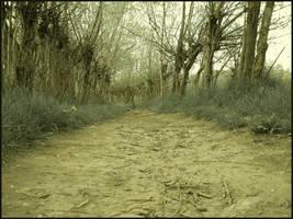 the road by Carpi-albinutza
