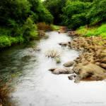 Flowing Beauty by Misty-Lane