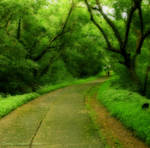 Way To Serenity_ by Misty-Lane