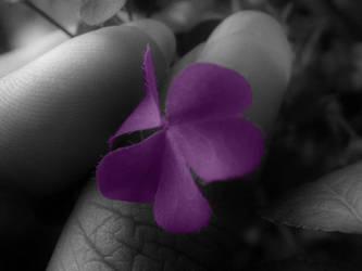 Purple Love .. to spread .. by Misty-Lane