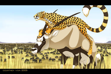 Please Do Not Ride the Gemsbok by hellcorpceo