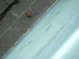 Float away by laracoa