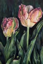 Two Sisters (Tulips) by ebjeebies