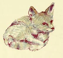 Baby fox by lienertje