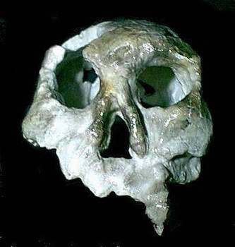 vampire skull by MichaelGarcia7
