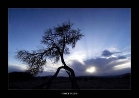 solitude by Blackest-Rose