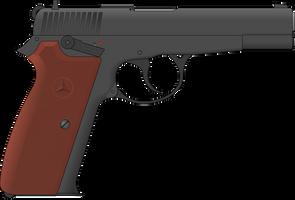 9 P 78 by Semi-II