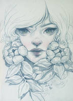Roses_sketch by dimary