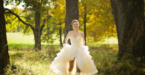 Weddings, 15 by vuda