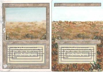 Scrublands -Side by Side- by GargoyleGardens