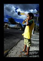 meu brasil brasileiro by kezs